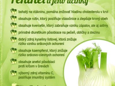 fenikel a zdravá strava