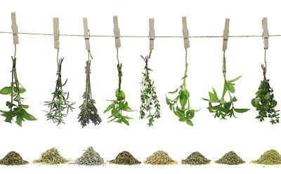 ako udržať bylinky čerstvé