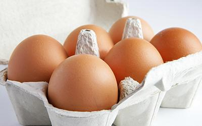 vajíčková diéta